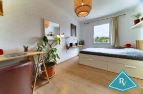 Maison moderne avec jardin et garage